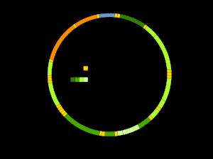 Mitocondri-DNA
