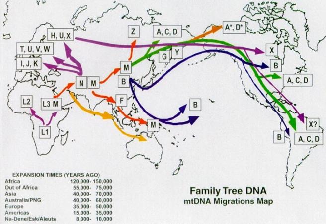 migrations_html_615eaf2b.jpg
