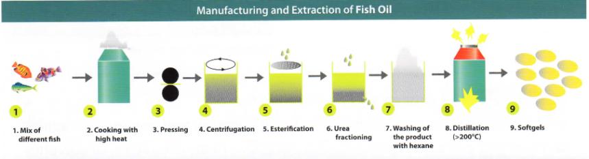 processo-produttivo-omega3